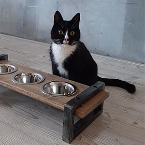 Industriele voerbak voor de kat