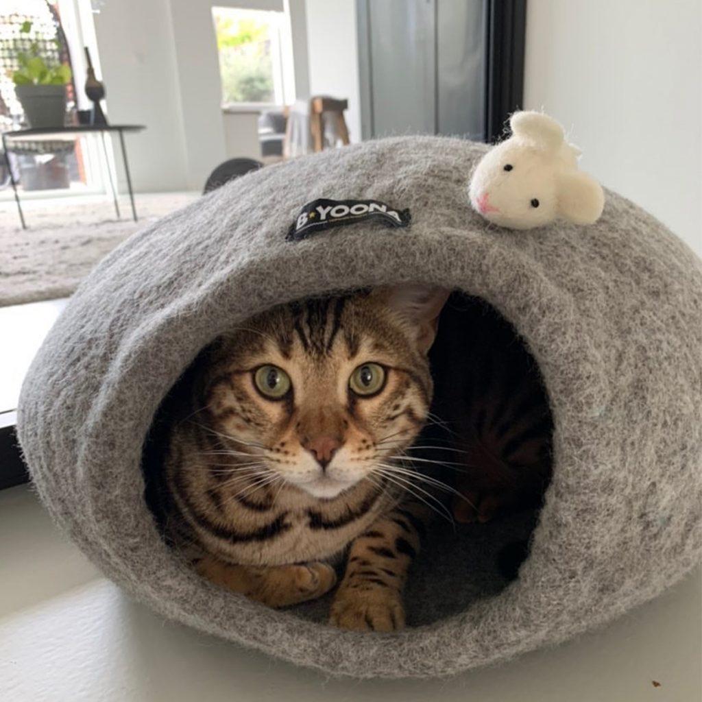 wollen catcave honden en kattenzooi