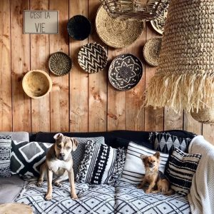Island collectie hond