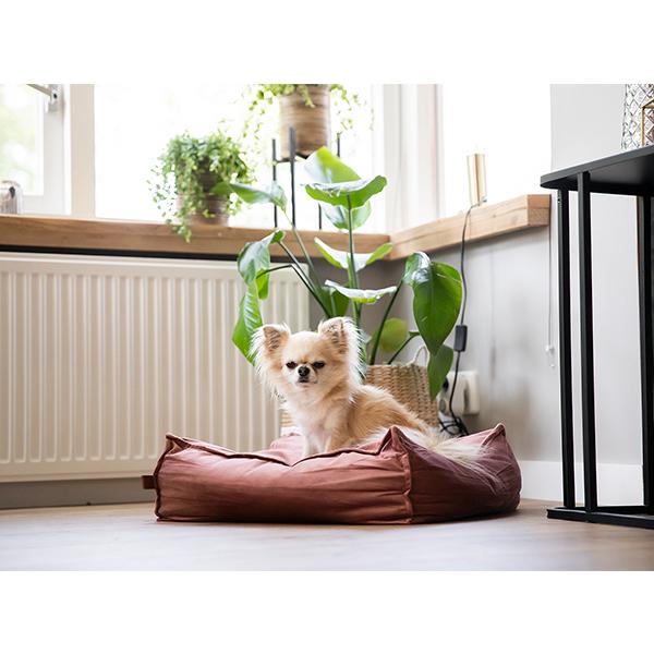 hondenkussen velveti honden en kattenzooi