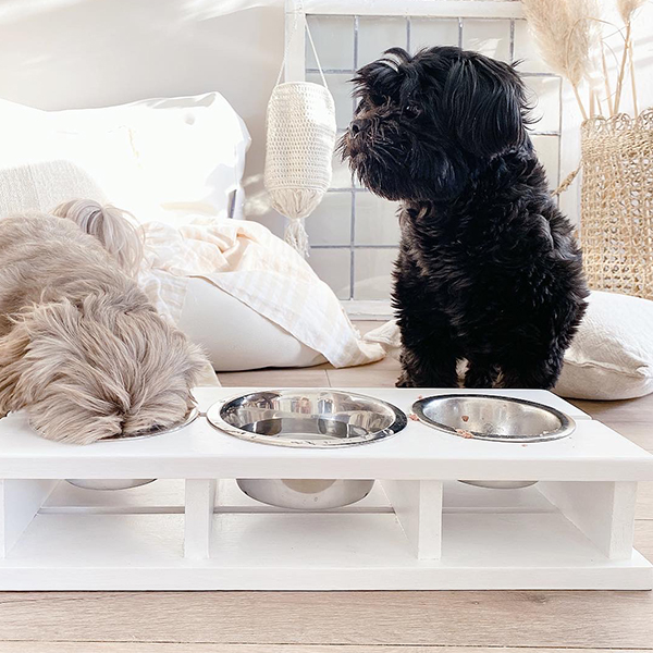 hondenvoerbak wood white 3.0 honden en kattenzooi
