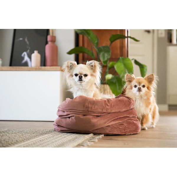 fluco fluwelen chihuahua mand honden en kattenzooi