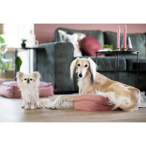"""Sanne Mik -""""Ik heb 2 prachtige mandjes van Honden & Kattenzooi, de Velvet roze! Ze staan súper leuk in huis en onze hondjes zijn er dol op. Ze blijven ook erg goed! Ik word nog steeds, na een jaar, enorm blij van deze mandjes in ons huis.  Honden & Kattenzooi heeft een mooi assortiment (heb je die voerbakken al gezien?!) en je wordt heel vlot en leuk geholpen! Een webshop (& mensen achter de schermen haha) met humor. Echt een aanrader!"""""""